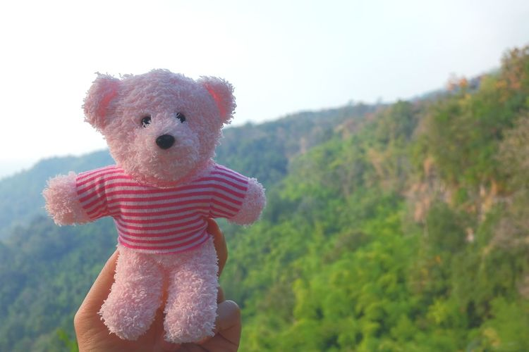 Childhood Child Teddy Bear Stuffed Toy Cute One Person Day Nature Children Only Rural Scene Outdoors Tree Close-up Sky Abdomen Dating Romance Love EyeEmNewHere Nature Beauty In Nature Scrapbook Valentine Pink Bear Sweetheart