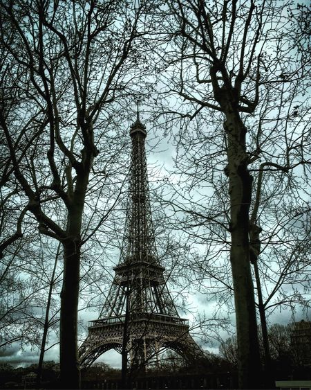 Paris... Eiffel Tower Paris City Cityscapes Trees Winter Backlight Shadow Sky Mmaff From My Point Of View EyeEm Gallery Eye4photography