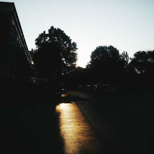 Vscocam VSCO City Landscape Sunset Beautiful Light And Shadow Light Trees Evening