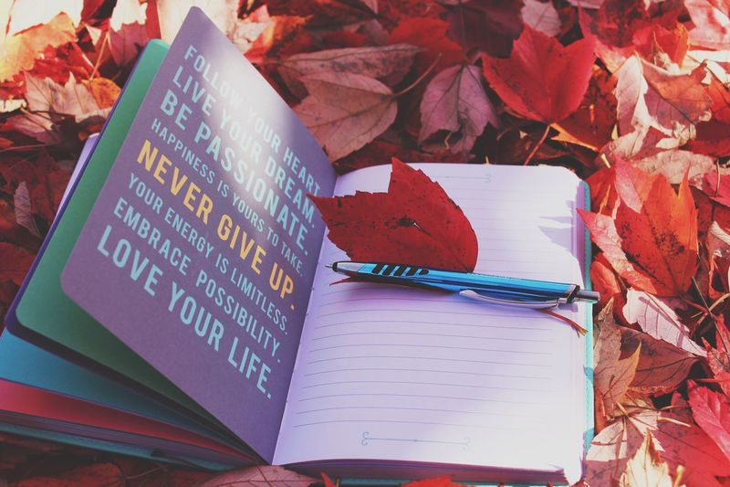 Follow your heart; Live your dream; Be passionate; Happiness; Never give up; Limitless energy; embrace possibility; Love life! Unplugging and back to the basics - brainstorming ideas out in nature with pen and paper and motivational positive affirmations. EyeEm Nature Lover Musings Close-up Paper Leaf No People Communication Book Text Annie1029 Inspirational Motivation Words Journal Notebook Diary Page Autumn Leaves Red Color Writing Nature Season  Sunlight Dreams Thought And Reflection Love Yourself Press For Progress Modern Workplace Culture Inner Power Visual Creativity A New Beginning