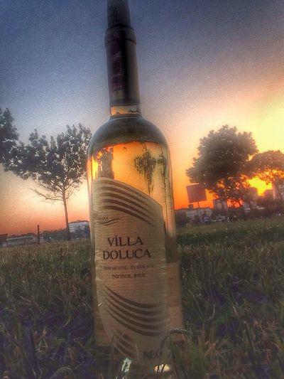 Wine White Sky Amazing