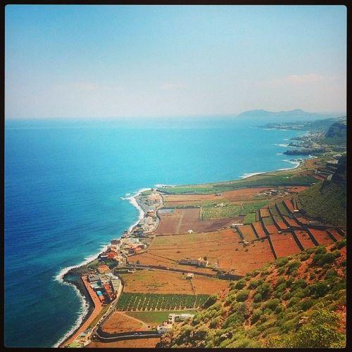 Costa de San Felipe en Sta. María de Gü ía IgersCanarias Igerslp Canariasviva costanorte