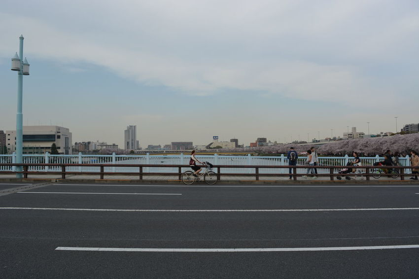 Riding bicycle Beautiful Day Bicycle Bridge Sakura Sumidariver Tokyo,Japan