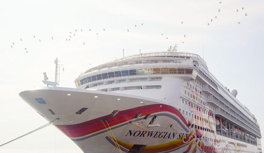 Norwegian Sun moored in Peru. Cruise Ship FotosDeSWAO NorwegianSun Peru Bird Cruise Cruising Nautical Vessel Norwegian Cruise Norwegiancruiseline Transportation