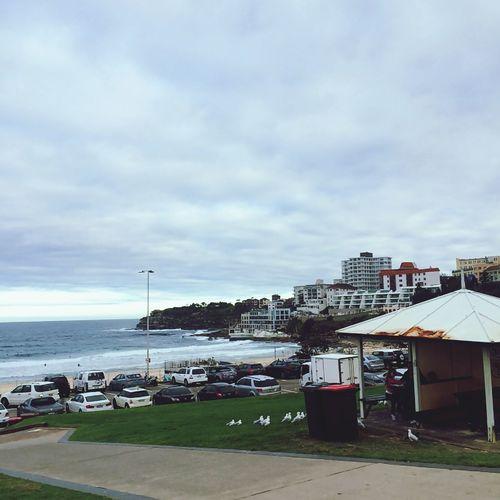 Sea Bondibeach Sydney