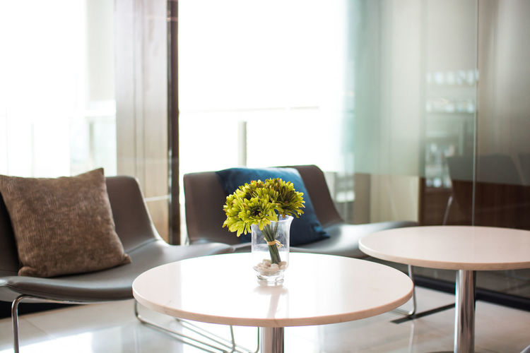 Absence Chair Coffee Table Day Domestic Room Empty Flower Flowering Plant Furniture Glass - Material Home Home Interior Indoors  Modern Nature No People Plant Seat Table Vase Window