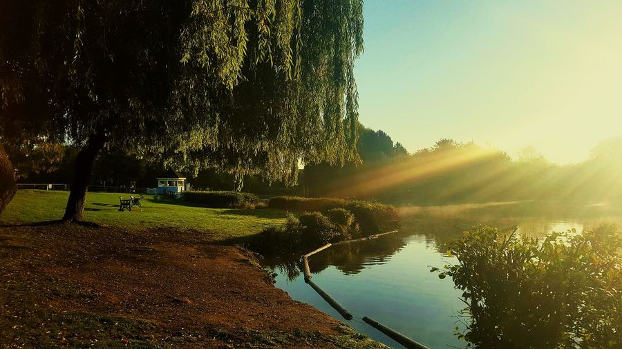 Park in Swanley Morning Sun Lake View Park First Eyeem Photo Sunrise_Collection Nature_collection Sunny Day EyeEm Best Shots Lake_collection