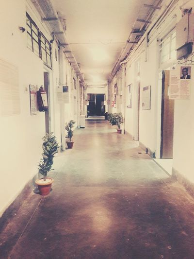 History Building Exterior Indoors  The Way Forward Destination Unknown Empty Backgrounds Silhouette Full Frame University Corridor Emptycorner Light And Shadows Passageway Emptyclassroom Memory Lane EyeEmNewHere