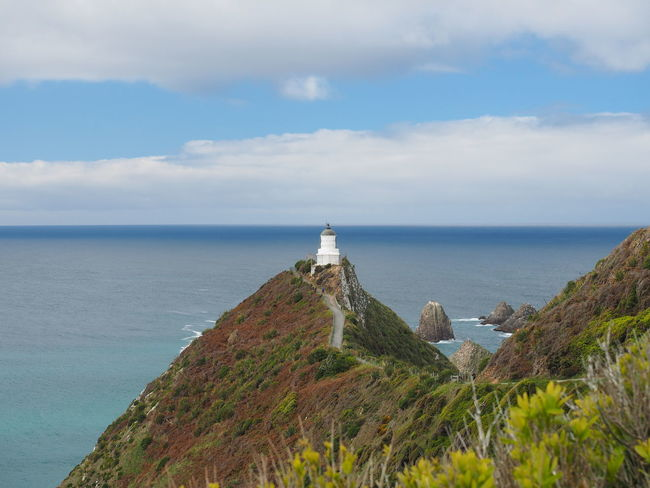 New Zealand Scenery Nugget Point Lighthouse Lighthouse Tranquil Scene Tranquility