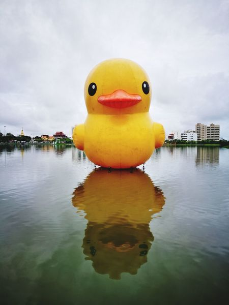 Yellow Duck Udonthani Thailand NongPrajakPark Water No People Outdoors Reflection Yellow Duck