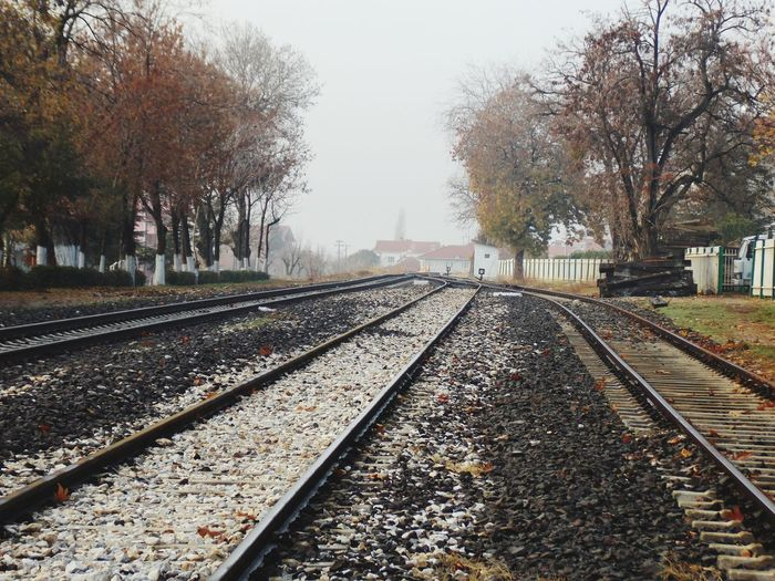Empty railroad tracks by trees against clear sky during foggy weather