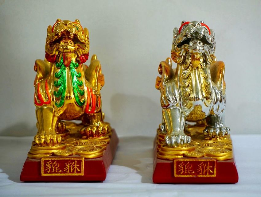 Childhood Chinese Guardian Lions Chinese Guardian Sculpture At A Temple Foo Dogs Foo Lions Full Frame Fuu Dog Imperial Palace Indoors  Lion Lion Dog No People Pinyin Temple Zen