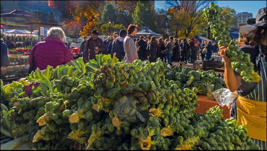Brussel Sprouts, Purple Cauliflower & Fall colors @ Union Sq. Mkt. - 11/19/16 EyeEm StreetPhotography, NYC Fresh On Market November 2016 Fresh Produce Malephotographerofthemonth Sat. Before T-Day Lots Of Shoppers The Journey Is The Destination