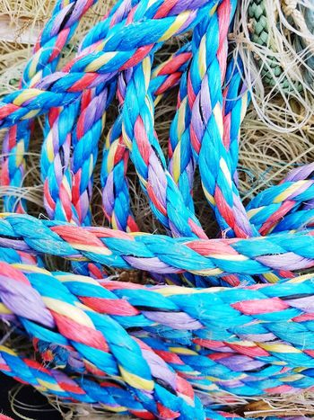 Fishing Hut Beach House Ropes Colourful Colourful Ropes Fishing Tools Fishing Net Blue And Purple