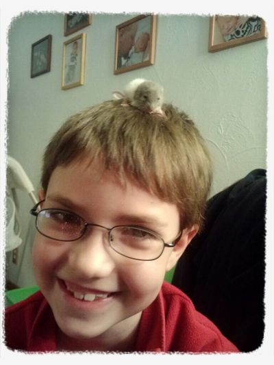 B with Nibbles the baby rat on his head!