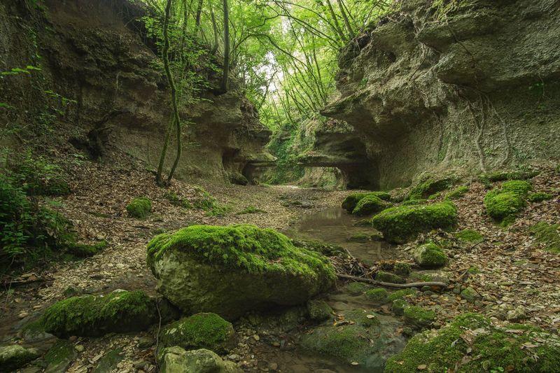 Sony A6000 Landscape Photography River Tusciafotografia Italy Gallese Visitlazio Viterbo Trakking Tuscia  Green Canyon Samyang 12mm F2