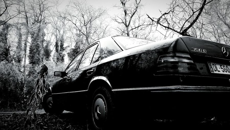 Starline One - MB W124 It's Winter Car Tree Outdoors Day Frozen Cold And Frosty Nature No People Old-fashioned