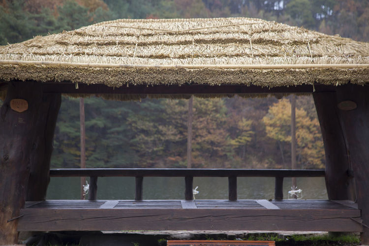 autumn raining pond in Namwon, Jeonbuk, South Korea Pond Rain Raining Tranquility Architecture Beauty In Nature Built Structure Close-up Day Nature No People Outdoors Raining Pond Rainy Day Roof Tree Water Wood - Material