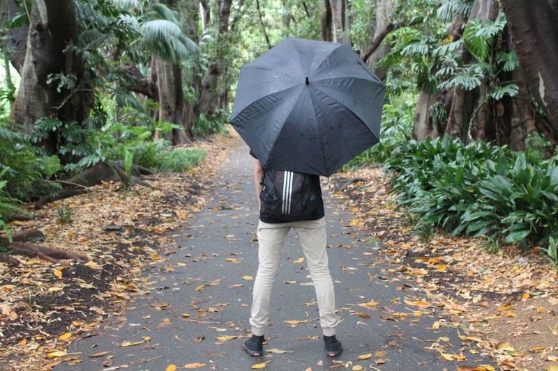 Adidas Umbrella Walking Rain Rear View Lifestyles Footpath Outdoors Rainy Season Nature Botanical Gardens Botanical Adelaide, South Australia Adelaide Young Men Young Young Photographer Young People Vans Vans Off The Wall Vansoffthewall Jeans EyeEmNewHere Trees Fresh On Eyeem