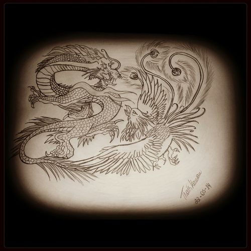 Tattoo Desenhando Ave Fenix Dragon