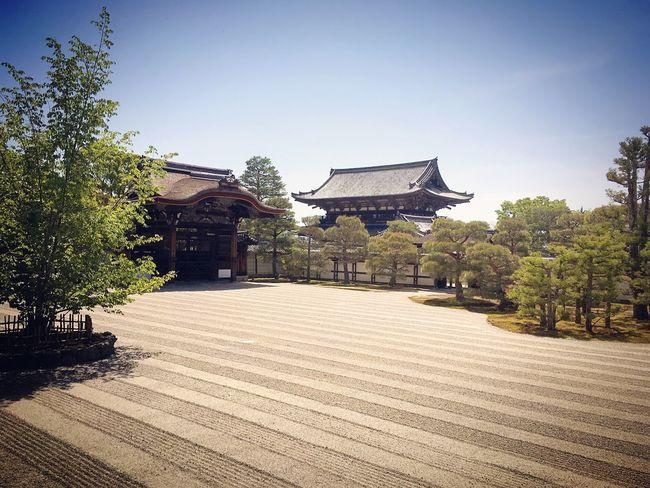 仁和寺 京都 Kyoto Architecture Building Exterior Travel Destinations 3XSPUnity Kyoto, Japan Relaxation Kyototravel No People Enjoying Life Lifestyles Hello World Relaxing Kyoto Garden Japanese Garden