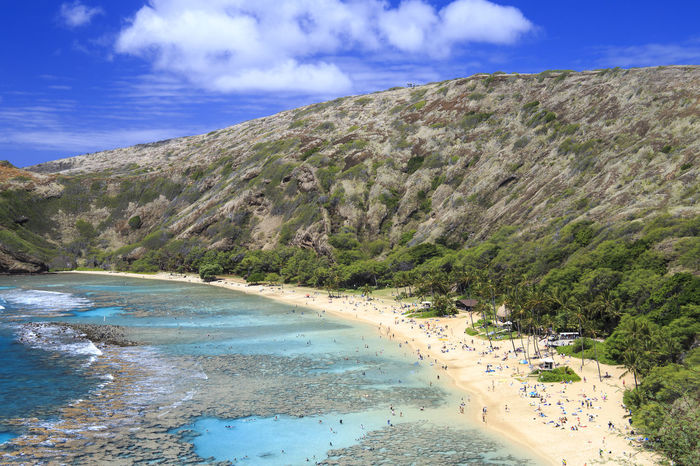 Hawaiian snorkeling Beach Beauty In Nature Coastline Coral Reef Hanauma Bay Hawaii Nature Oahu Outdoors Relax Sand Sea Sky Snorekling USA Water