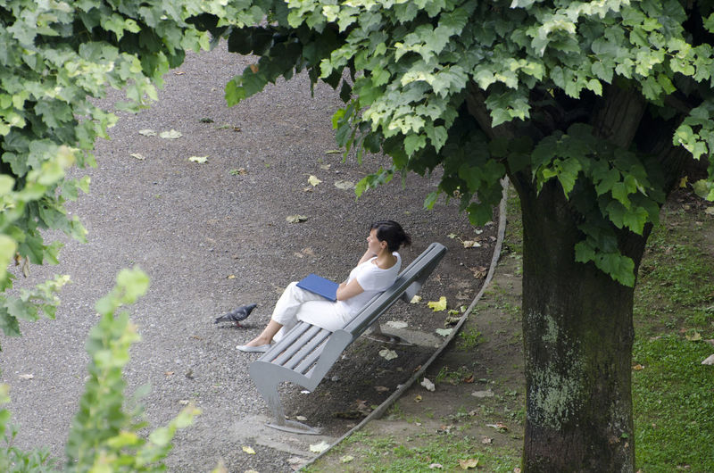 High angle view of woman sitting on bench by pigeon on footpath at park