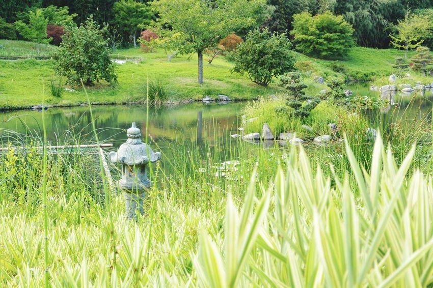 L'île et la lanterne Asian Garden Zen La Bambouseraie Anduze Holiday Memories South France