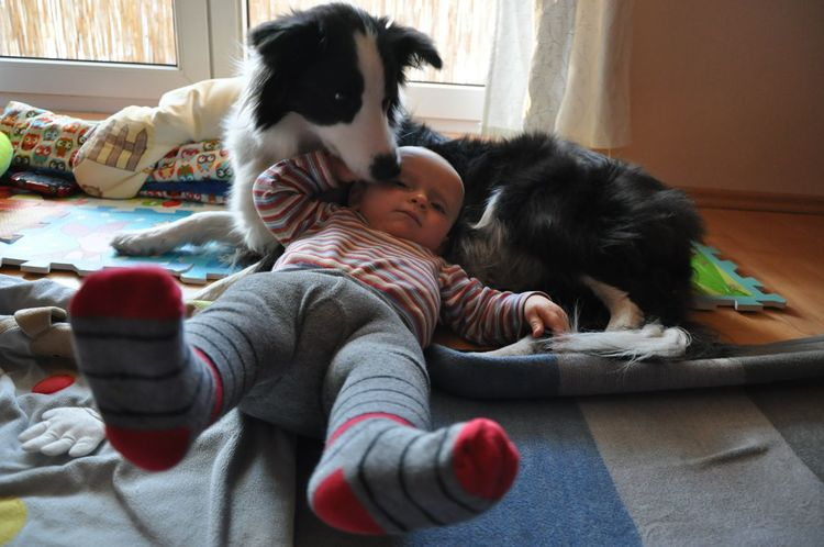 Live..... Togetherness Pets Love Two People Indoors  Bonding Dog People Friendship Adult Domestic Life Home Interior Embracing Lying Down Child Domestic Animals Day Childhood Men Living Room