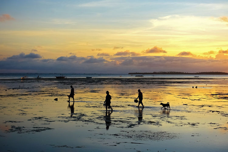 Small family walking and fishing on a sunset beach, with their dog Beach Beach Sunset Bohol Cebu Crab Crabs Culture Dog Family Filipino Fishing Fishing Village Island Life Island View  It's More Fun In The Philippines Locals Low Tide Philipines Philippines Sand Crabs Silhouette Silhouettes Sunrise Sunset Villagers