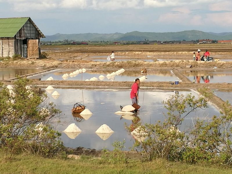 Lady in red Reflection Occupation Farm Working Rural Scene Outdoors People Water Adult Landscape Farm Worker Salt - Mineral Salt Flats Salt Flat Salt Basin Working Walking Backgrounds Tree