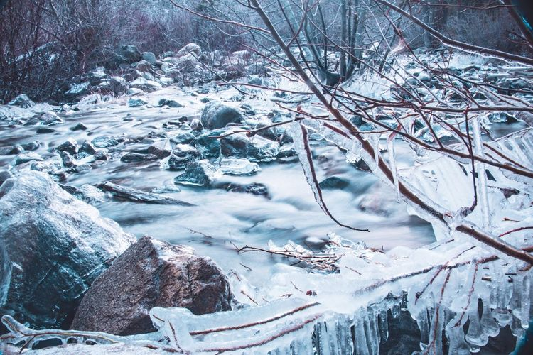 Close-up of frozen stream