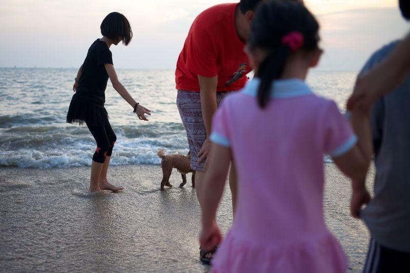 Dog And Sea Dog At Beaches Outdoors Sekinchan Togetherness Vacations Walking