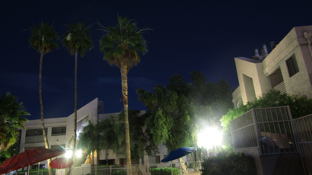 night, tree, building exterior, palm tree, architecture, illuminated, built structure, outdoors, no people, sky, street light, residential building, growth, low angle view, nature, city