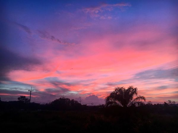 Sunsets after storms 👌 Sunset Sky Silhouette Beauty In Nature Cloud - Sky Tranquil Scene Outdoors Travelingtheworld  EyeEmBestPics The Week On Eyem Landscape_Collection Travel Photography SeeTheWorldThroughMyEyes Thailand Colors Pink Tree Scenics Nature No People Silhouette The Week Of Eyeem Sunset_collection Ao Nang, Krabi. Travelwithme Millennial Pink The Great Outdoors - 2017 EyeEm Awards