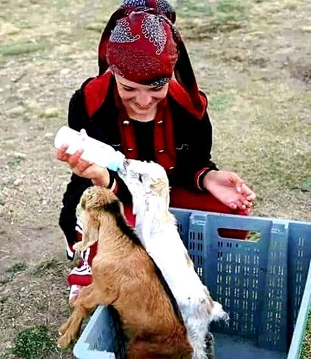 Yavrular Sut Milk One Animal Animal Adult Domestic Animals Animal Themes Mammal Dog Pets People Day Outdoors Warm Clothing One Person Mature Adult Real People Sitting Child Portrait Human Body Part Nature