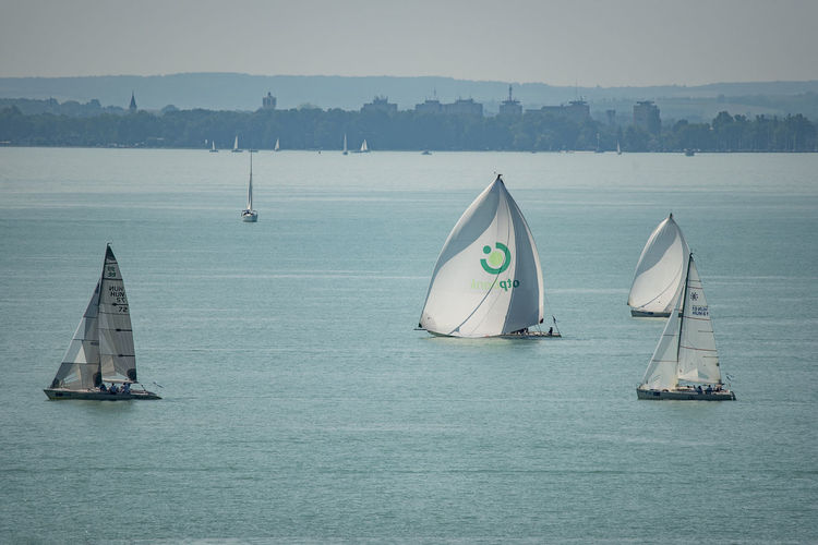 Blue Ribbon Beauty In Nature Canvas Day Floating On Water Nature Nautical Vessel No People Outdoors Race Sail Sail Boats Sailboat Sailing Scenics - Nature Sea Sky Tranquil Scene Tranquility Transportation Travel Water Waterfront Yacht