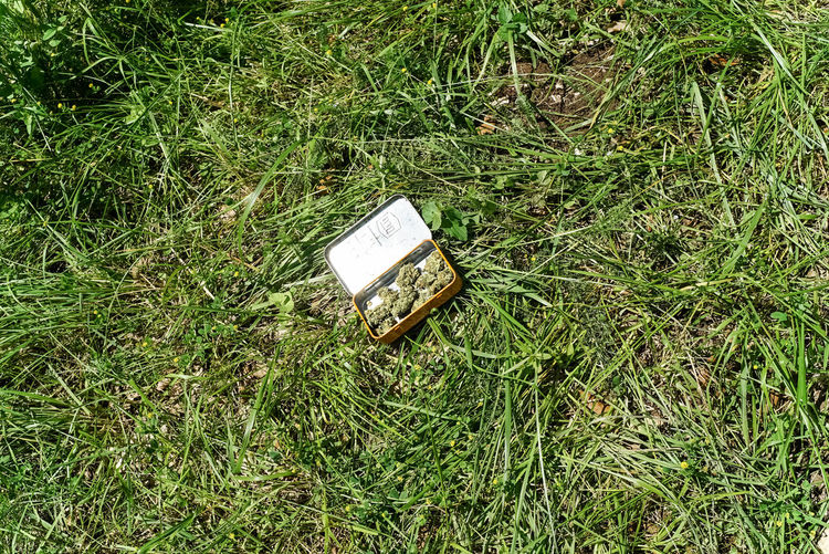 // Still Life Abandoned Communication Day Directly Above Field Grass Green Color Growth High Angle View Land Nature No People Obsolete Outdoors Plant Publication Run-down Single Object Still Life Tranquility Weed
