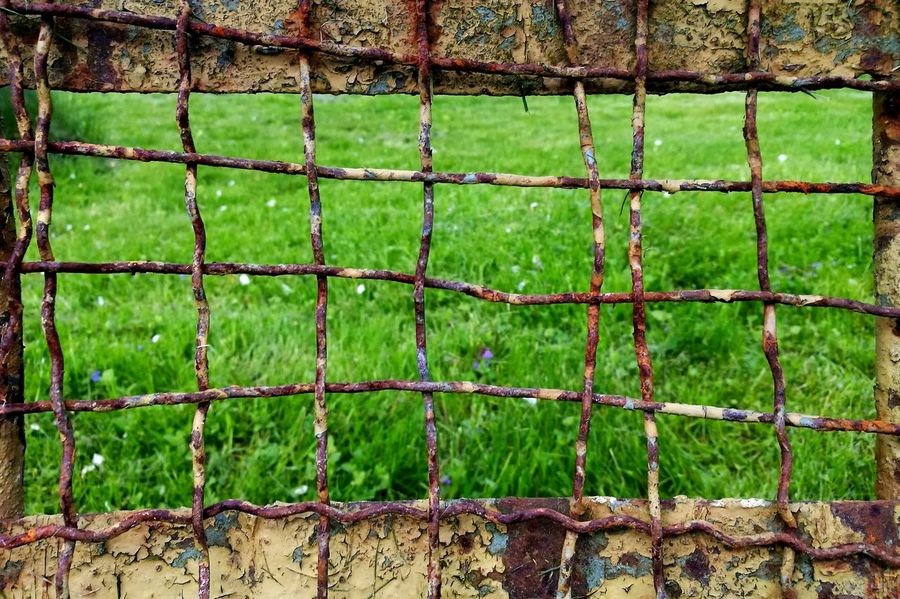 Green Color Grass Protection Safety Security Outdoors Metal Day Net - Sports Equipment Sport Growth No People Soccer Field Soccer Playing Field Nature Goal Post Close-up Sky