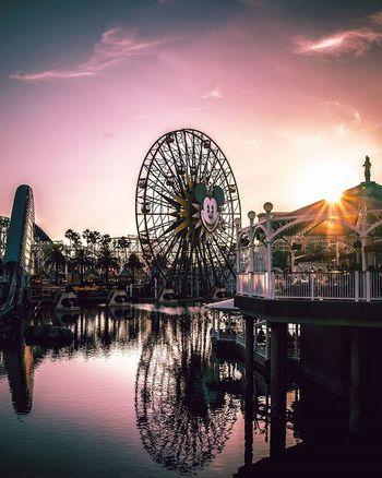 Disneyland Californiaadventures Illuminated Sonya7II Life Is Beautiful Colour Of Life Colorphotography