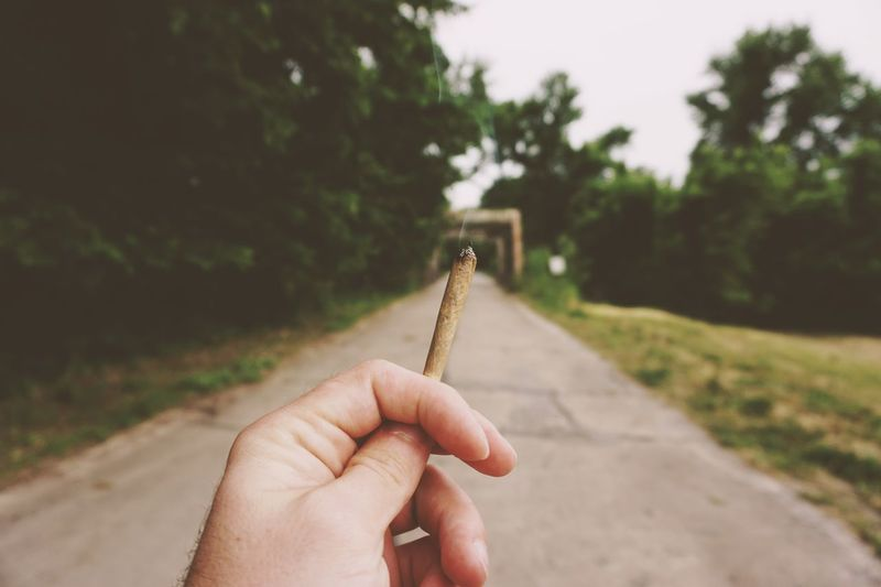 Close-Up Of Hand Holding Marijuana Joint On Road