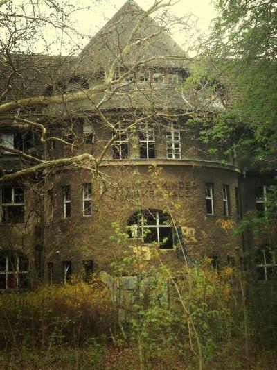 Nature Building Krankenhaus Lostplaces