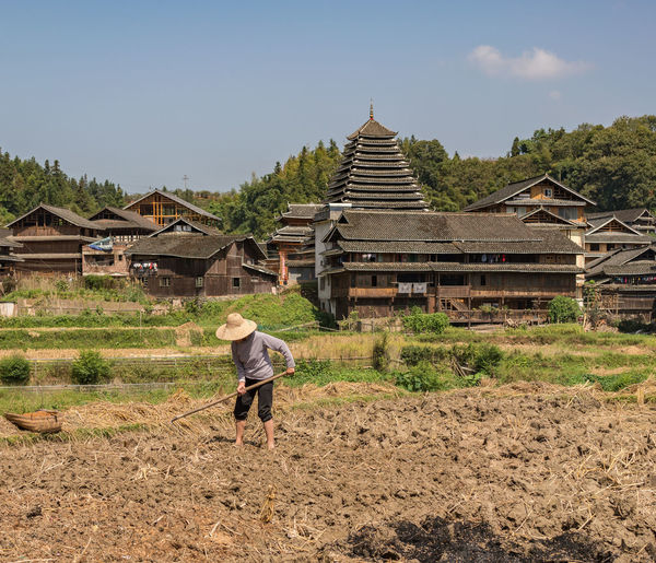 Peasant working in rice field Architecture ASIA Building Exterior Built Structure China Chinese Cultures Day Dong Dong Villages Nature One Person Outdoors Peasant People Real People Rice Field Sanjiang Traditional Tree Village