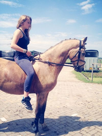 Steun en toeverlaat my horse ❤️