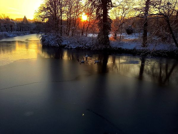 Winter in Germany EyeEm Gallery EyeEm Selects EyeEm Best Shots EyeEm Nature Lover Water Nature Sky Sunset No People Reflection Wet Lake Tranquil Scene Built Structure Tranquility City Tree Plant Beauty In Nature Building Exterior Outdoors Scenics - Nature Architecture Rain