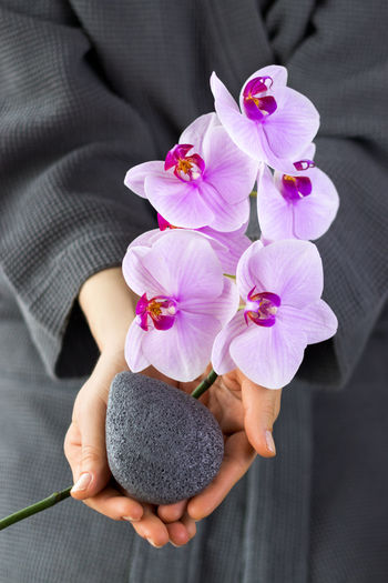 Close-up of woman holding pink flowering plant