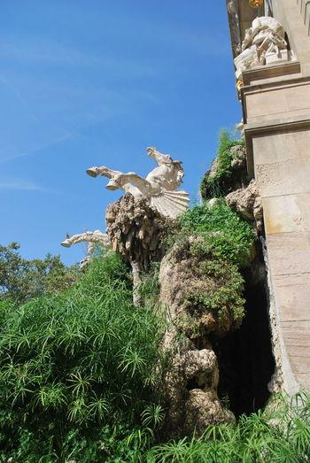 Animal Themes Animal Wildlife Animals In The Wild Barcelona Barcelona, Spain Bird Blue Catalonia Catalunya Day Mammal No People One Animal Outdoors Park Sculpture Sky SPAIN Statue Statue Tree