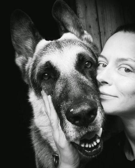 ВЕО я и моя собака собака Mydog Shepherd Dog Shepherd East European Shepherd восточник восточно-европейская овчарка мой старый друг My Pet