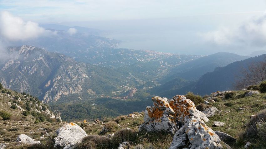 Mountain Pine Tree Nature Landscape No People Outdoors Beauty In Nature French Riviera Menton, France Saint Agnes Côte D'AzurMediterranean Sea Horizon High Angle View Premium_collection Selected For Premium