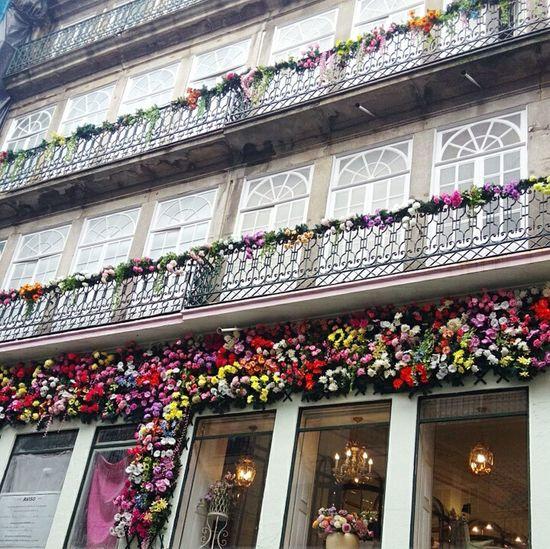 Rua Flores Porto Road Flor Portugal First Eyeem Photo